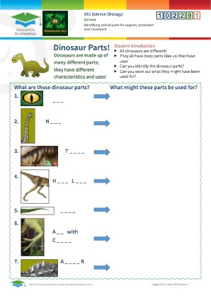 Click to view Resource 102291 Identifying animal parts for support, protection and movement