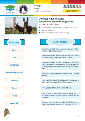 Click to view Resource 104163 Understanding Donkey Features