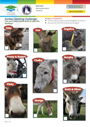 Click to view Resource 104023 Spot the Donkey! Team Challenge
