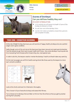 Click to view Resource 104051 Scores of Donkeys!