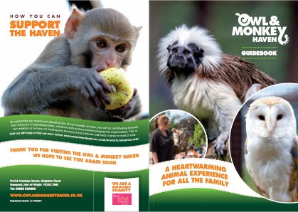 Monkey Haven brochure download