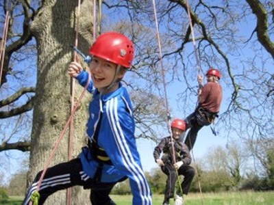 Picture of Tree Climbing at Goodleaf Tree Climbing