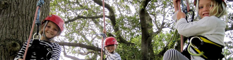 Isle of Wight fun group activity Tree Climbing